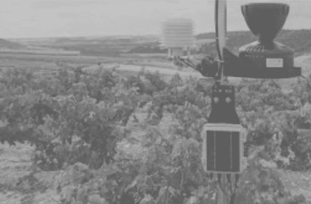 Control hídrico y climatológico en el pago Ribera Alta del Algodor